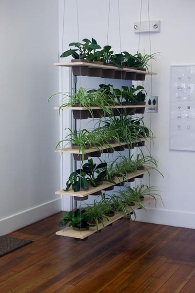 Cây xanh có thể thay thế các bức tường bê tông cứng nhắc, lạnh lẽo, đem đến cảm giác thư giãn, gần gũi thiên nhiên cho chủ nhà.