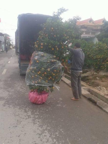 Quất Văn Giang lên đường phục vụ tết Đinh Dậu