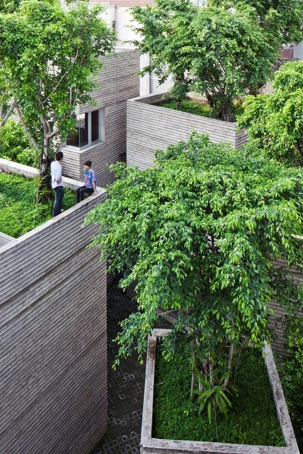 Giữa một thành phố sôi động và tấp nập như Sài Gòn, ngôi nhà nổi bật với sự bao bọc bởi cây xanh ở khắp mọi nơi.