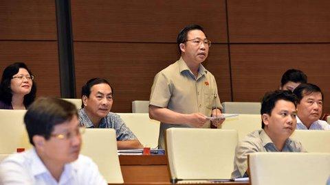 ĐB Lưu Bình Nhưỡng. Ảnh: Hoàng Anh