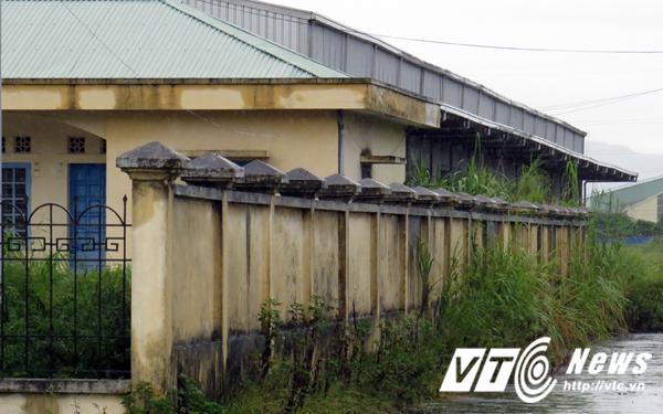Tại nhà ga Cái Lân, khu nhà kho chứa hàng rời rộng khoảng 1.500m2 gần 3 năm nay cửa đóng then cài, cỏ dải mọc gần tới mái.