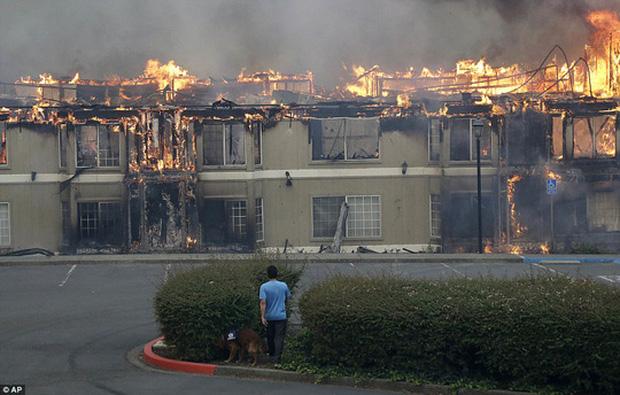 Nhiều căn nhà bị thiêu rụi. Ảnh: AP