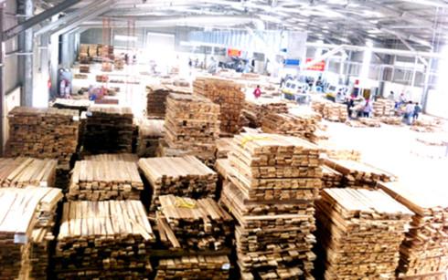 Ngành gỗ lo đói nguồn cung (Ảnh minh họa: KT)