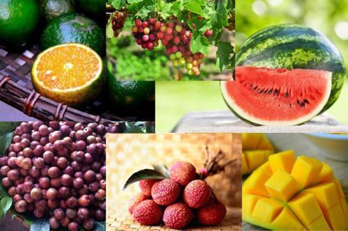 Cần ăn phong phú các loại hoa quả. Các loại quả chín màu vàng, đỏ, da cam như đu đủ, hồng, dưa hấu, cam, quýt vàng có hàng lượng caroten khá cao và giàu sắt (0,9 mg% - 1,2 mg%).