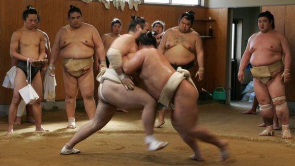 Mọi võ sĩ khi lựa chọn bộ môn sumo đều phải tuân theo hệ thống luật lệ vô cùng gắt gao.