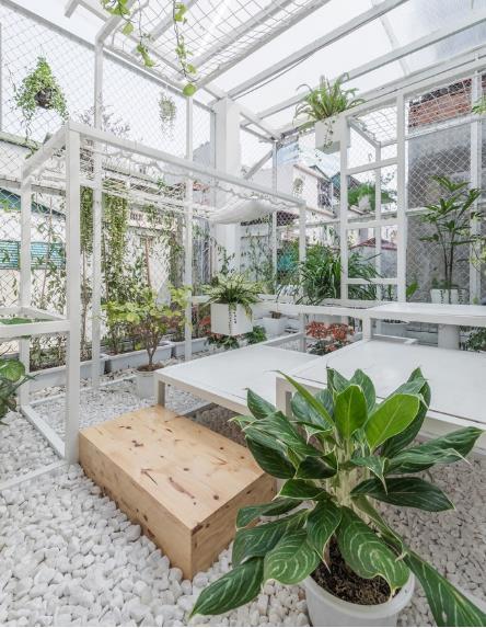 Cây xanh được trồng nơi đây không chỉ làm đẹp cho không gian mà còn có chức năng như một bộ máy lọc không khí làm sạch môi trường.