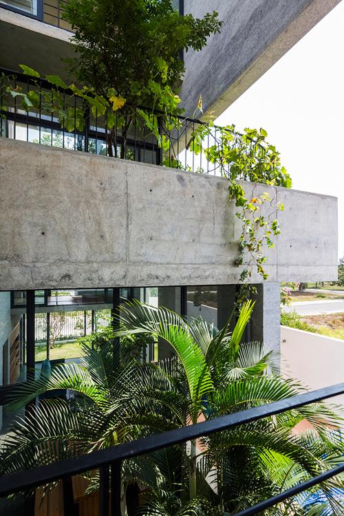 Trong ngôi nhà này diện tích dành cho cây xanh còn lớn hơn không gian để ở và sinh hoạt. Tại các khu vườn có đủ loại cây lấy bóng mát, rau xanh mọc khắp các tầng.