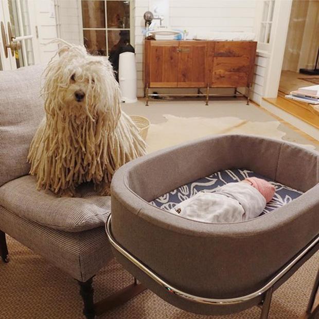 Bố cùng bạn Beast sẽ canh cho con giấc ngủ no tròn (Ảnh: Facebook nhân vật)