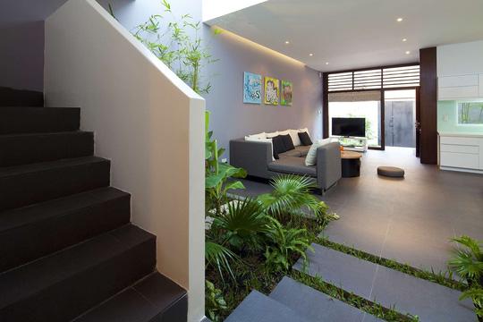 Khu vườn nhỏ nơi giếng trời vừa là điểm nhấn đặc sắc cho không gian vừa mang màu xanh tươi mát cho căn nhà.
