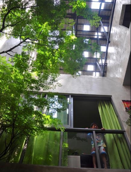 Nhờ giếng trời và cây xanh mà mọi không gian bên trong ngôi nhà nơi đâu cũng thoáng mát và tràn ngập ánh sáng mặt trời.
