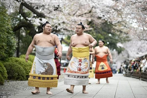 Các võ sĩ từ hạng ba trở xuống đều không được ra ngoài hay tiếp xúc với thế giới xung quanh.