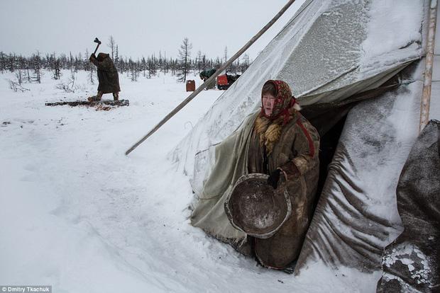 Những căn lều làm bằng da tuần lộc có khả năng giữ ấm rất tốt.