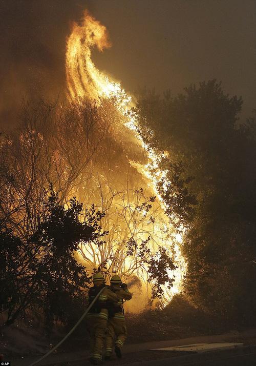 Nhân viên cứu hỏa cố khống chế đám cháy. Ảnh: AP