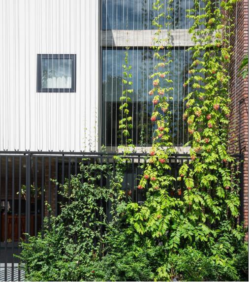 Dù nằm ngay ở thành phố Vinh, nhưng ngôi nhà này như một dấu lặng tách biệt hoàn toàn với cuộc sống ồn ào bên ngoài.
