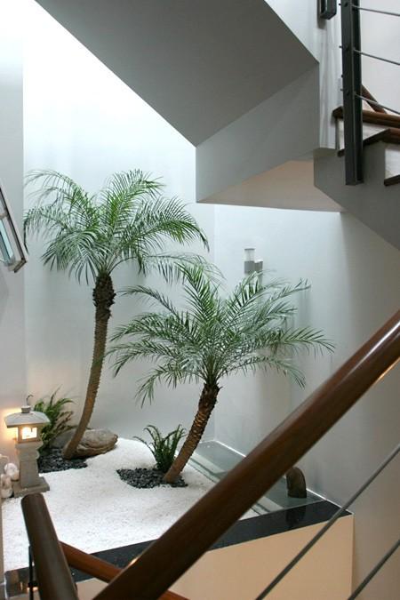 Trên tường có thể ốp đá, hình vẽ độc đáo cho bức vách, có thể bố trí vườn tường xanh mát.