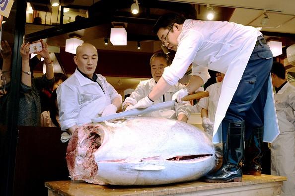 Năm 2016, ông Kiyoshi Kimura, chủ chuỗi nhà hàng Sushi Zanmai cũng đã trả 117.000 USD để mua một con cá ngừ vây xanh nặng 200 kg trong phiên đấu giá tại chợ Tsukiji, Tokyo. Ảnh: Getty.