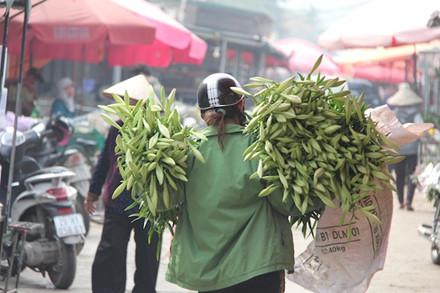Khác với giá hoa bán lẻ ngoài tuyến phố, tại chợ Hoa Quảng Bá, giá hoa dao động từ 25 đến 30.000 đồng/bó 10 bông.