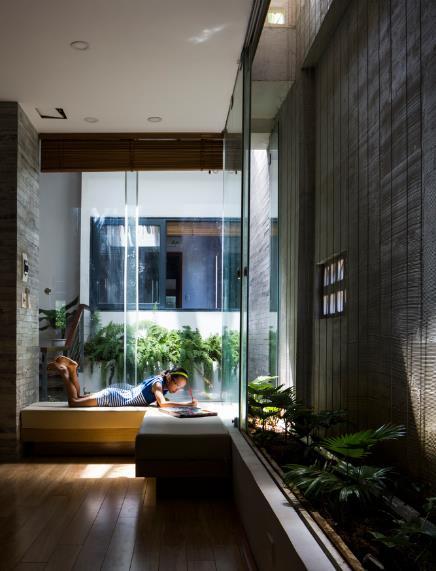 Các hoạt động của gia đình và không gian sống tập trung xung quanh và nằm bên cạnh khu trồng cây nơi giếng trời.