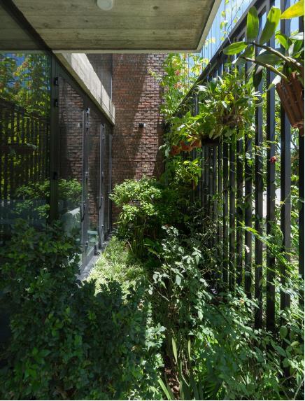 Phần mặt tiền trước nhà được dành riêng một khoảng vườn nhỏ với rất nhiều cây xanh tươi tốt.