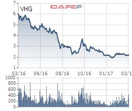 Diễn biến giá cổ phiếu VHG trong 1 năm gần đây.