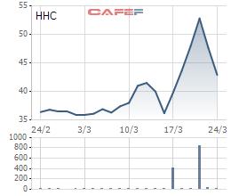 Diễn biến giá cổ phiếu HHC trong 1 tháng gần đây.
