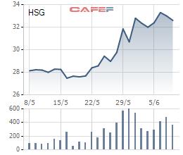 Diễn biến giá cổ phiếu HSG trong 1 tháng gần đây.