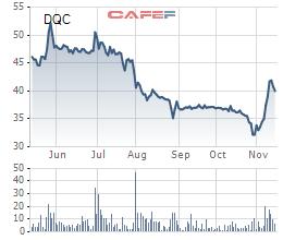 Diễn biến giá cổ phiếu DQC trong 6 tháng gần đây.