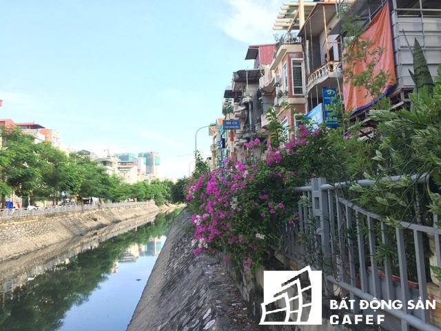 Thay vì đường ven bờ sông nhỏ và không có lan can và cây xanh, đến nay nhiều đoạn cây hoa cảnh nở rực cả trăm mét đường ven sông.