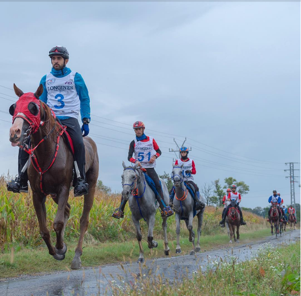 Hoàng tử từng giành cup trong giải đua ngựa Sheikh Mohammed Bin Rashid Al Maktoum Endurance với thành tích 160 km vào năm 2015.