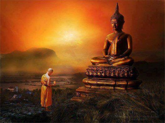 Hãy đáp lại sự tức giận của người khác bằng sự kiên nhẫn, lòng vị tha. Chỉ có vậy bạn mới có thể cân bằng được cảm xúc, thanh thản tâm hồn.