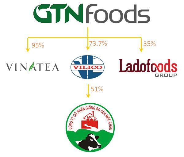 GTNfoods: Khi công ty chuyên đi M&A đứng trước những đề nghị thâu tóm - Ảnh 2.