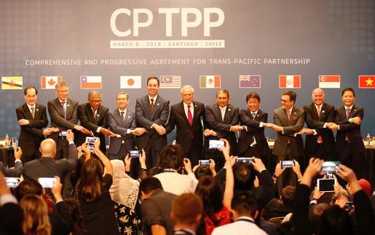 Sợ thuốc độc của Mỹ, Trung Quốc muốn gia nhập CPTPP? - Ảnh 1.
