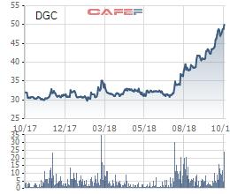 Hóa chất Đức Giang (DGC): Lãi 245 tỷ đồng sau khi nhận sáp nhập DGL - Ảnh 2.