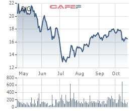 DIC Corp (DIG) chào bán 47 triệu cổ phiếu cho cổ đông hiện hữu giá 13.000 đồng/cp - Ảnh 1.