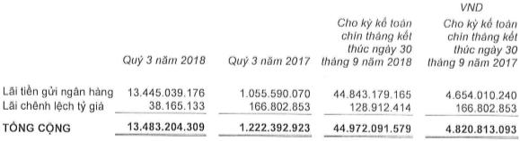 Tăng đầu tư thu lãi, Ricons thực hiện 88% chỉ tiêu lãi ròng sau 9 tháng - Ảnh 2.