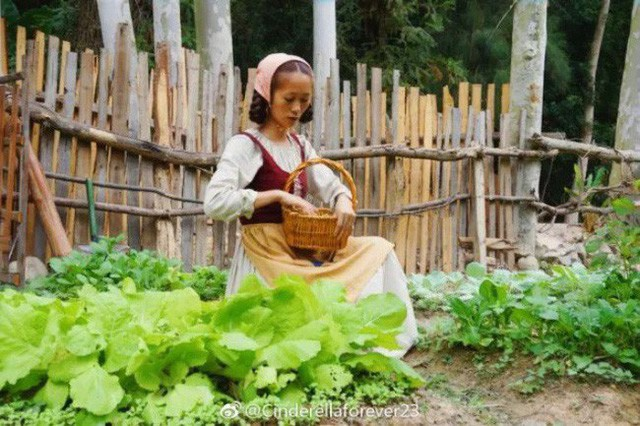 Ngôi nhà trên núi đẹp như tranh vẽ và cuộc sống bình lặng của cô gái tự nhận mình là cô bé Lọ Lem - Ảnh 16.