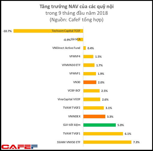 Hiệu quả đầu tư 9 tháng của các quỹ hàng đầu trên TTCK Việt Nam không bằng đem tiền gửi tiết kiệm - Ảnh 2.