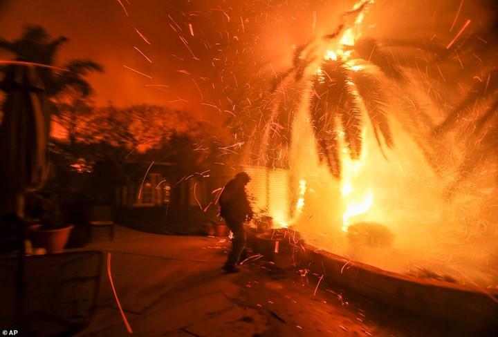 """Hãi hùng cảnh cháy rừng giống """"bom hạt nhân phát nổ"""" ở California, Mỹ - Ảnh 14."""