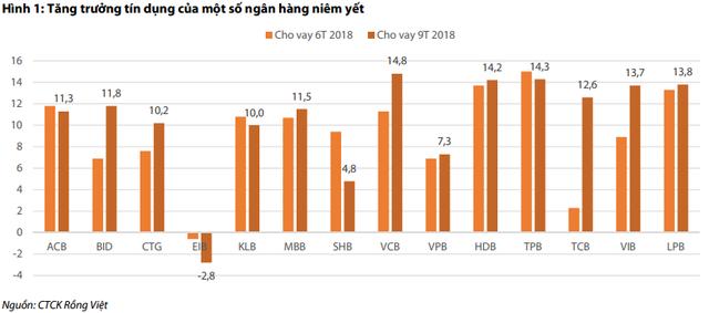 Tăng trưởng tín dụng phân hóa giữa các ngân hàng - Ảnh 1.