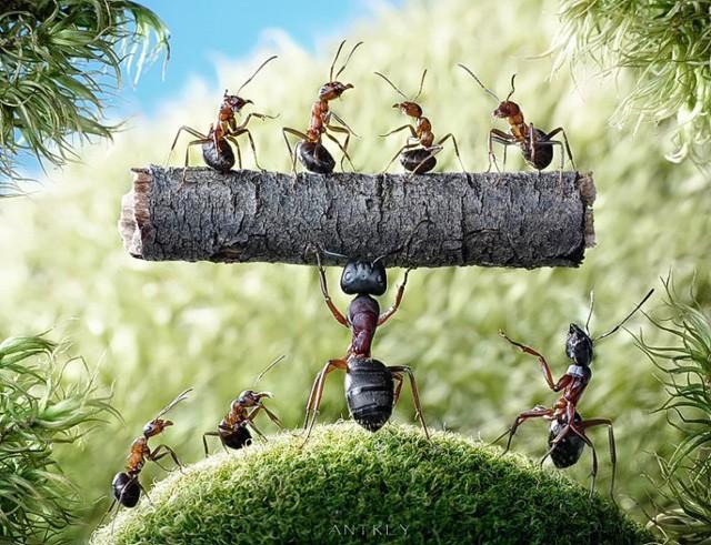 Bí mật của người thành công: Không chỉ tìm ra con đường mới, họ còn có thể biến những điều bình thường trở nên thần thánh - Ảnh 4.