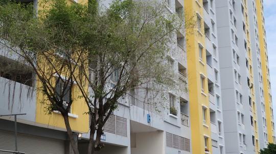 Vụ cháy chung cư Carina: Cựu Tổng giám đốc Công ty Hùng Thanh được tại ngoại - Ảnh 1.