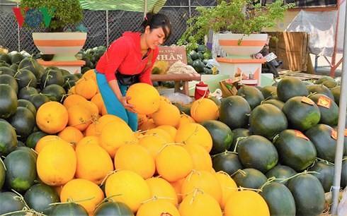 Giá trị xuất khẩu nông sản Việt đứng thứ 15 trên thế giới - Ảnh 2.