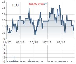 TCO tăng trần phiên thứ 2 liên tiếp sau thông tin mua cổ phiếu quỹ - Ảnh 1.