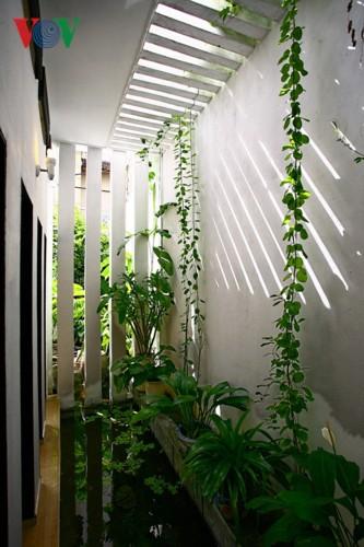 Ngôi nhà giản dị của 1 nhà giáo ở Đà Nẵng - Ảnh 10.