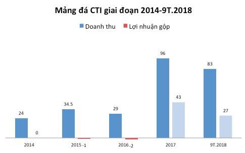 Idico Cường Thuận (CTI): 9 tháng đầu năm đạt 133 tỷ lãi ròng, tiếp tục thu lợi từ của để dành - Ảnh 2.