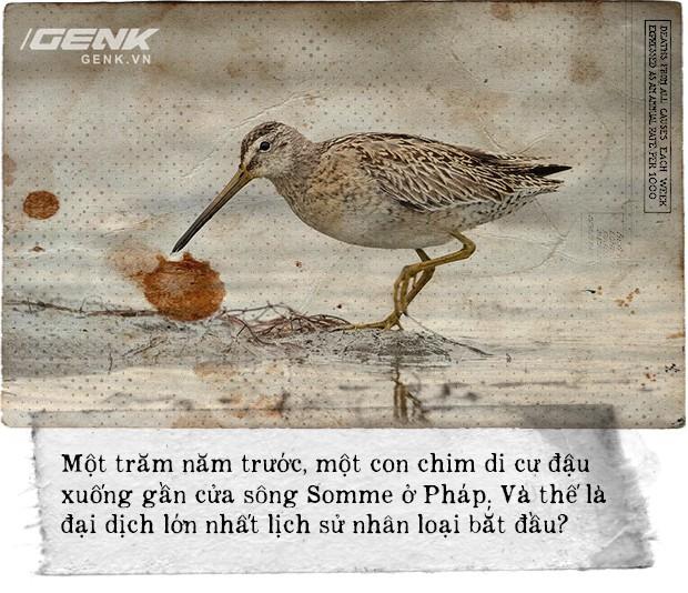 100 năm dịch cúm lớn nhất lịch sử nhân loại: Một con chim đậu xuống cửa sông mở đầu đại dịch giết chết 50 triệu người - Ảnh 8.