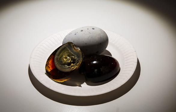 4 món ăn cực quen thuộc của Việt Nam bất ngờ xuất hiện trong bảo tàng những món ăn kinh dị tại châu Âu - Ảnh 5.