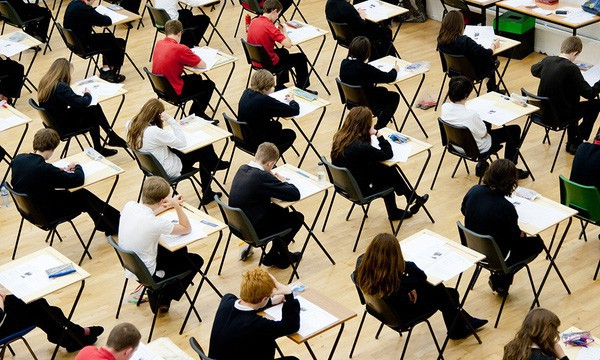 Không thi Đại học, không bị bố mẹ ép buộc, sinh viên nước ngoài chọn ngành, chọn trường như thế nào? - Ảnh 3.