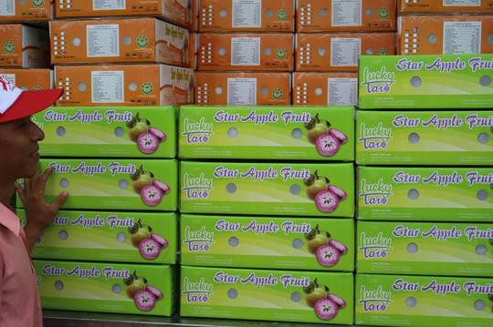 Trái vú sữa Việt Nam tại Mỹ có giá khoảng 350.000 đồng/kg - Ảnh 1.