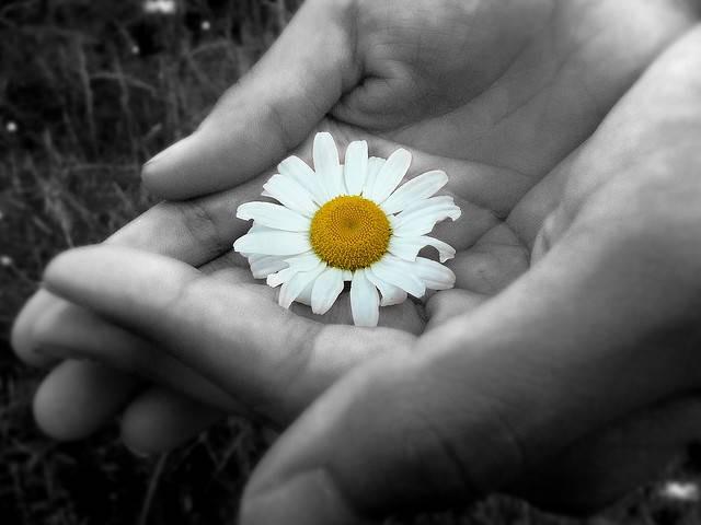 Đừng vội xem thường những người một đời sống bình lặng, không thích khoe khoang thực lực: Càng tài trí hơn người càng khiêm tốn, đó mới là cách sống khôn ngoan - Ảnh 2.